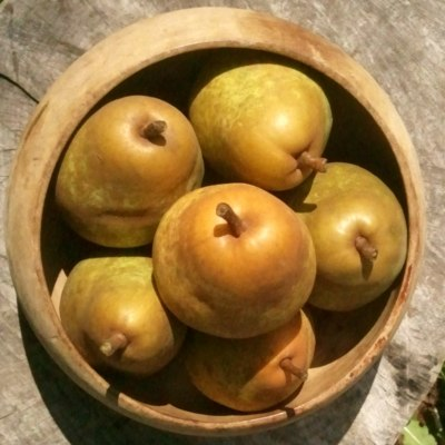 six pear in a bowl